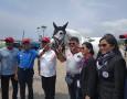 Kompetisi Ketangkasan Berkuda, Equestrian Champions League Resmi Bergulir